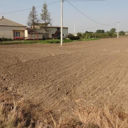 Gospodarstwo 2,30 ha, Grzegorzew powiat Koło