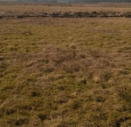 Grunt rolny, łąka 1,92 ha Busina-Kolonia, Poddębice